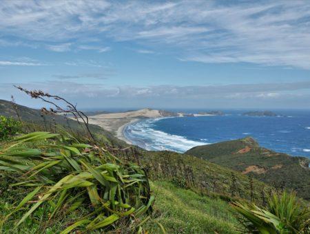 Einmal quer durch die Nordinsel