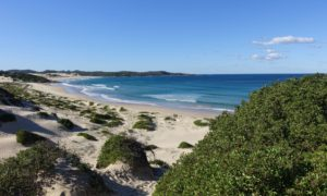 Sydney – Brisbane: Von Kiwis zu Känguruhs und Surfer