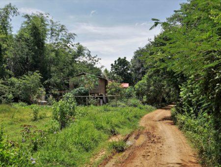 Von Thailands Grossstadt in die kambodschanische Provinz