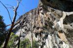Steile Felswand des Mt. Beerwah
