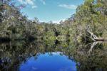 "Everglades, ""the Narrows"""