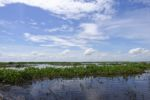 Tonlé Sap See