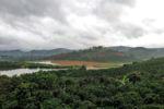 Blick von der Kaffeeplantage