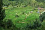 Blick ins Tal mit den Reisterrassen