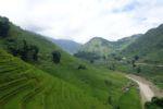 Reisterrassen bei Lao Chai