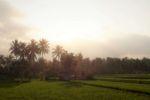Sonnenuntergang in Tetebatu