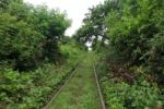 Idylle bei der Fahrt mit dem Bambootrain