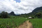 Wanderung nach Hoy San